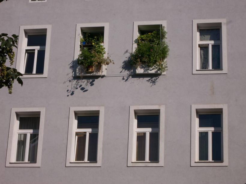 Fenstergarten – Ein Jahresrückblick 2015 – Einleitung